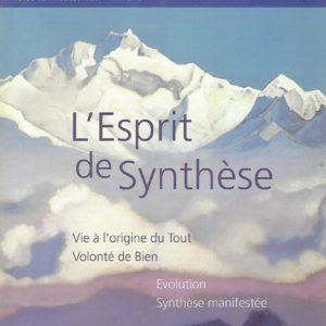 SB 5- L'Esprit de Synthèse