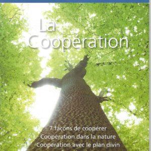 SB 8- La Coopération
