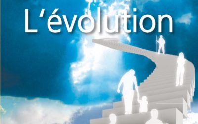 Le Son Bleu N12 – L'évolution – juillet 2010